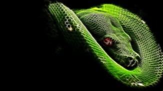 snake-on-fire-wallpaper,1366x768,65220